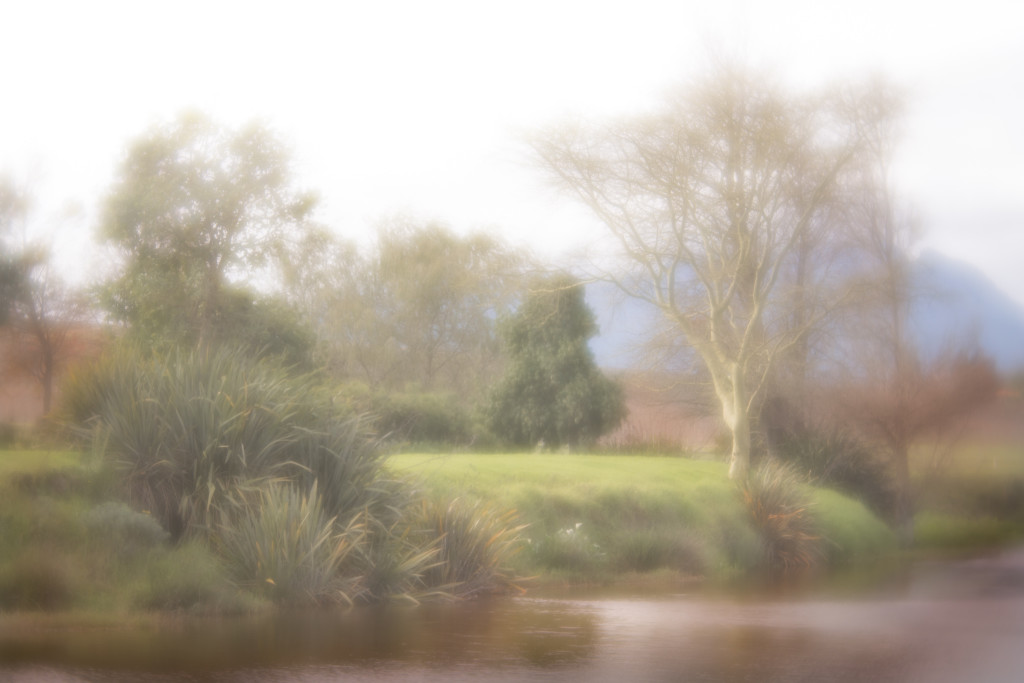 Nadine-Swart-Lensbaby-Velvet-56-5051